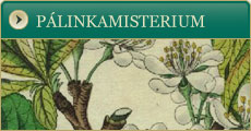 Plinkamisterium